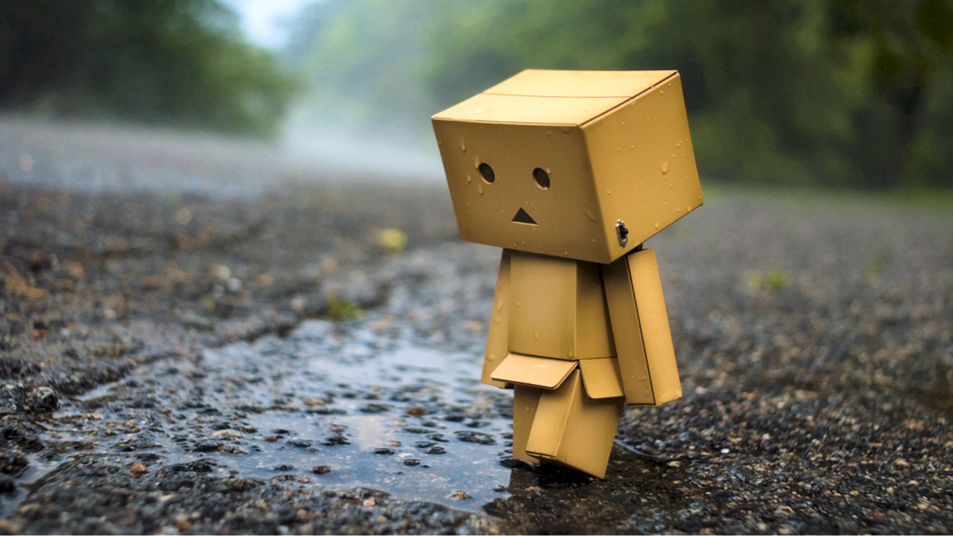 Danbo Desktop Wallpapers » 4452927 Danbo Backgrounds